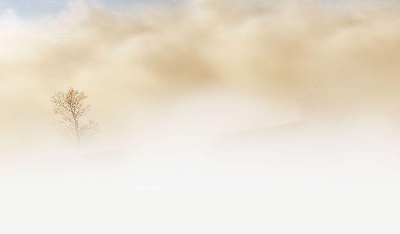 fog-240075__480.jpg