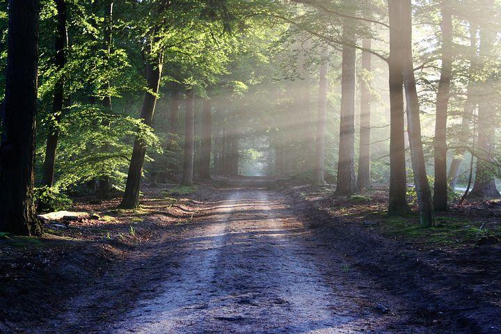 road-815297__480