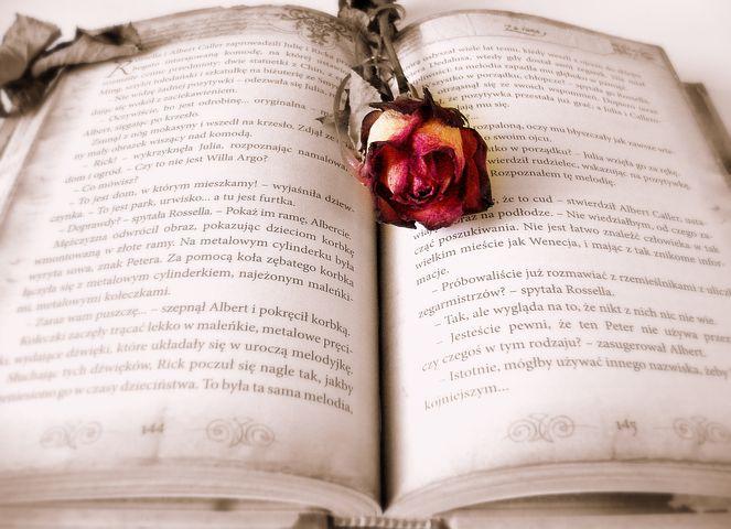 book-419589__480.jpg